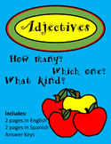 Adjectives (English and Spanish)