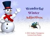 Adjectives: Wonderful Winter Adjectives