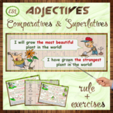 Adjectives: comparative and superlative forms