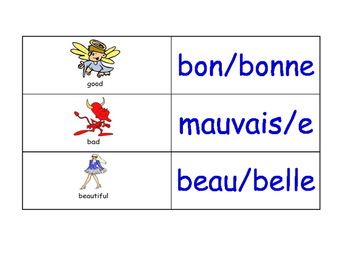Adjectives in French Flash Cards