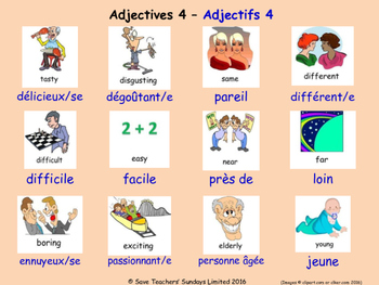 Adjectives in French Posters / Slides