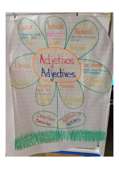 Dual Language, adjetives. Spanish / English.