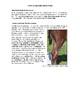 Administering Medications to Horses Fact Sheet
