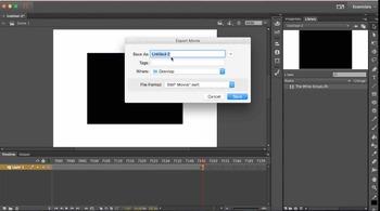 Adobe Flash Tutorial: Import an .flv video