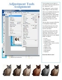 Adobe Photoshop Adjustments Lesson