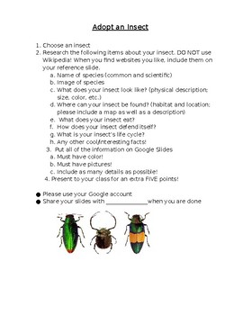 Adopt an Insect Project
