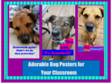Adorable Dog Posters for Your Classroom