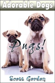 Adorable Dogs: Pugs!