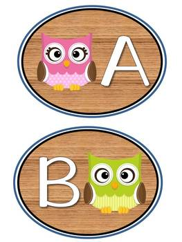Adorable Owl Word Wall Pack: Banner, Alphabet Labels and Word Cards