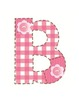 Adorable Pink Gingham Bulletin Board Letters or Word Wall