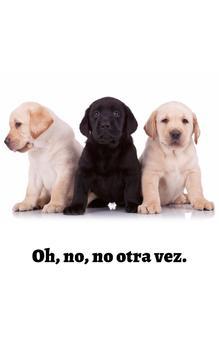 Adorables Perros: Los Labradores (Spanish Edition)