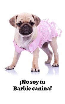 Adorables Perros Recopilación Vol. 1 (Spanish Edition)