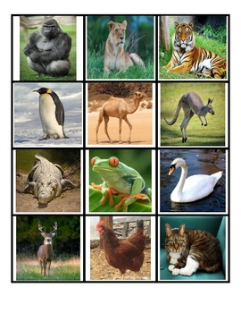 Adult /Baby Animal Matching Game