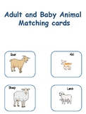 Adult and Baby animal matching
