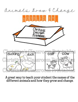 Adult and baby animal flash cards ( LEVEL 2)