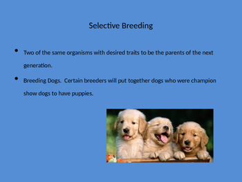 Advanced Genetics Terms