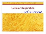 Advanced Placement (AP) Biology Review PPT: Cellular Respiration