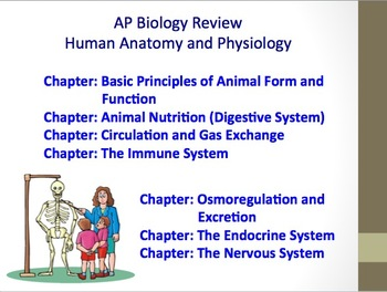 Advanced placement ap biology review ppt human body systems tpt advanced placement ap biology review ppt human body systems publicscrutiny Choice Image