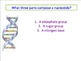 Advanced Placement (AP) Biology Review PowerPoint: DNA and Replication