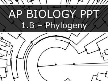 AP Biology (2015) - Unit 1.B - Phylogeny PowerPoint