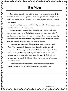Advanced Readers Homework Packet, Unit 5, Reading Street