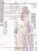 Adverbs Matching Worksheet