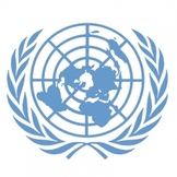 The United Nations - Text and Exercise Sheets
