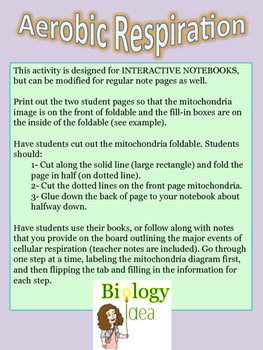 Aerobic Cellular Respiration Interactive Notebook notes page