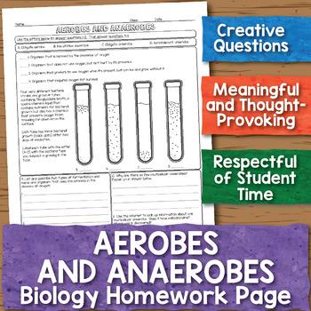 Aerobic and Anaerobic Organisms Biology Homework Worksheet