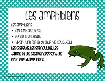 Affiches - Les classements des animaux. Types of Animals Posters FRENCH