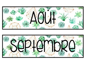 Affiches mois de l'année cactus