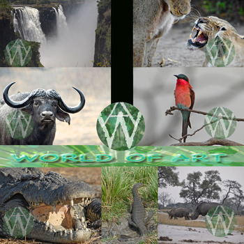 Africa: Botswana, Namibia, Zimbabwe, & South Africa - Animals, Scenes & People