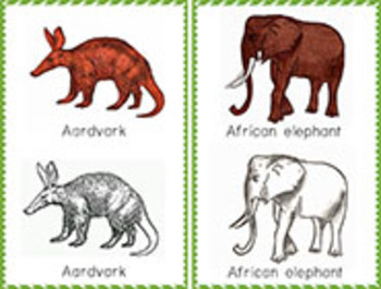 Africa: Tracing cards