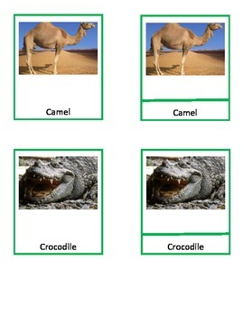 Africa Wildlife Montessori 3-part cards