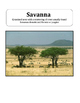 Africa Word Wall - illustrated