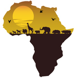 Overview of Africa using maps