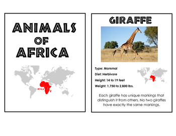 African Animal Cards