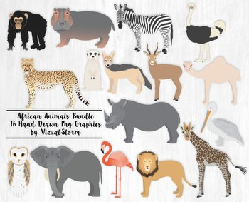 African Animal Clipart Bundle, 16 Hand Drawn Zoo Animal Illustrations