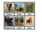 African Animal three-part cards