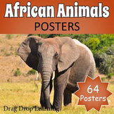 African Safari - Animals of Africa Posters