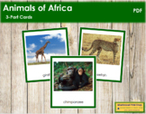 African Animals: 3-Part Cards (color borders)