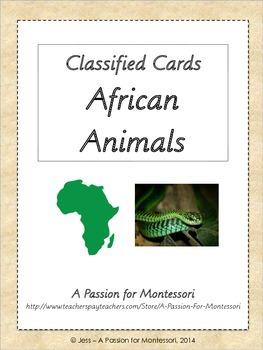 African Animals, 36 Three Part Cards, Montessori African C