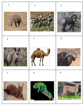 African Animals Checkers