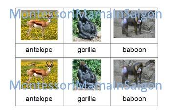 African Animals Montessori Three Part Cards