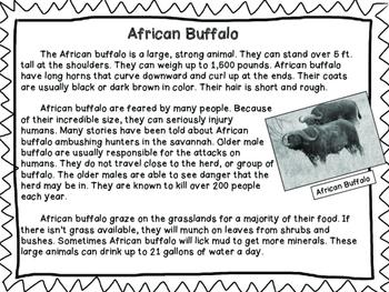 African Animals RI 2.2, RI 2.8, RI 2.7, RI 2.7, RI 2.5, RI 2.9