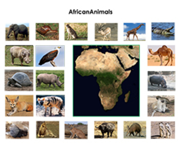 Animals of Africa :Montessori Three Part Cards
