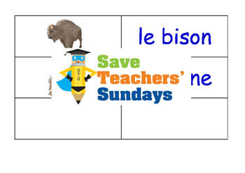 African Animals in French Worksheets, Games, Activities and Flash Cards