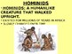 African Civilization The First Humans History