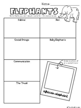 African Elephants Mini-Book and Graphic Organizer -- [Grades 2-5]