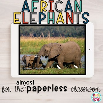 African Elephants for the (Almost) Paperless Classroom